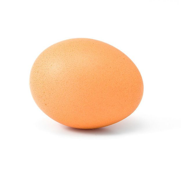 8116 a brown egg isolated on a white background pv