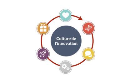 Les composants de votre culture de l'innovation