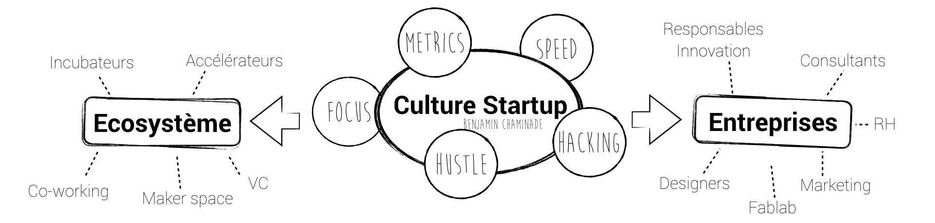 culture startup.001