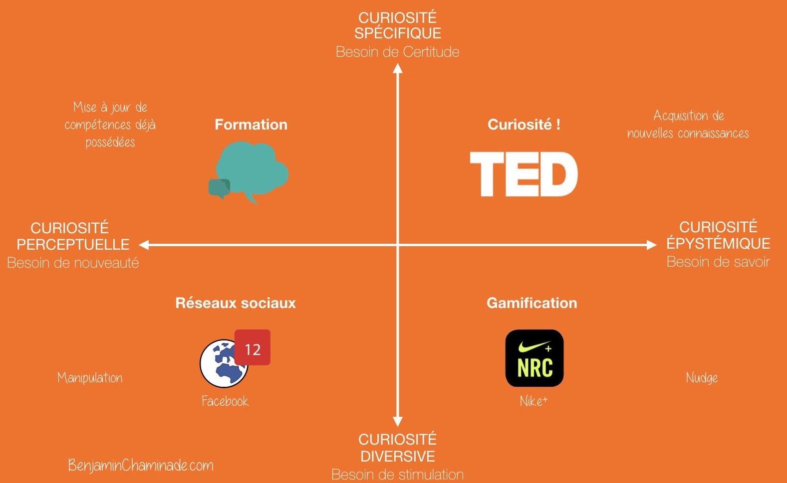 Management de la curiosité en entreprise
